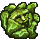 Curious Cabbage icon.png