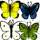 Any Butterfly icon.png