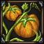 Pumpkin Planting icon.png