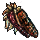 Curious Indian Corn icon.png